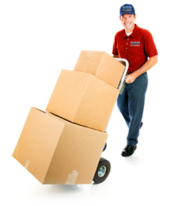 Backloads Furniture Removals